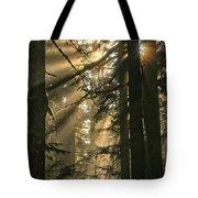 Sunburst Rainbow Tote Bag
