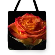 Yellow Rose With Red Tips Tote Bag