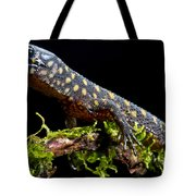 Yellow Spotted Tropical Night Lizard Tote Bag