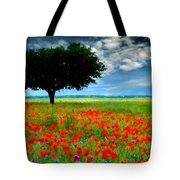 Landscape Illumination Tote Bag
