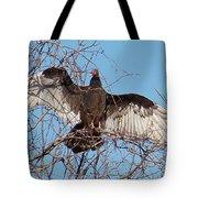 2000-buzzardjan2011 Tote Bag