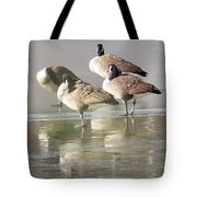 2004-geese On Ice Tote Bag