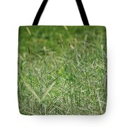 2008 Crab Grass Mead Tote Bag