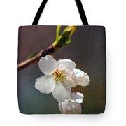 2008 Springtime  6365  Tote Bag