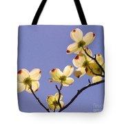 2009 Springtime  6399  Tote Bag