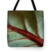 2010 Hydrangea Leaf Close Up 1 Tote Bag