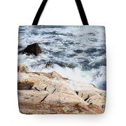 2010 Nh Seacoast 4 Tote Bag