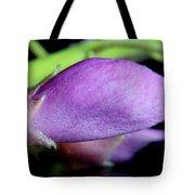 2010 Wisteria Blossom Up Close 14 Tote Bag