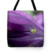 2010 Wisteria Blossom Up Close 20 Tote Bag