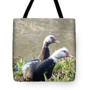2011-black And White Ducklings Tote Bag