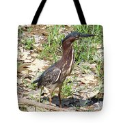 2014-baby Green Heron Tote Bag