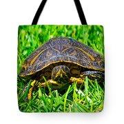 2015 05 03 01 B 1 _0181 Tote Bag