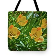 2016 Early May Meadow Garden Bright Gem Batalin Tulip Tote Bag