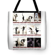 2016 High Resolution R Young Art Dance Calendar Tote Bag