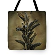2016 Horicon Marsh - Seed Pods Unfurled Tote Bag