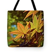 2016 Japanese Maple In The Sunlight Tote Bag