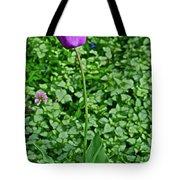 2016 Mid May  Exotic Purple Tulip Tote Bag