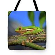 2017 11 04 Frog I Tote Bag