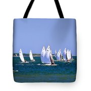 2017 National E-scow Championship Tote Bag