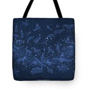 2017 Pi Day Star Chart Carree Projection Tote Bag
