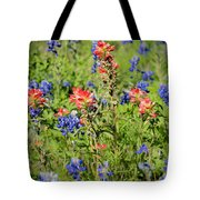 201703300-068 Indian Paintbrush Blossom 2x3 Tote Bag