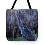 2018_3_09  Blue Heron-5652 Tote Bag