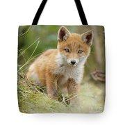 Red Fox Cub Tote Bag