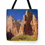 212437 Court Of The Patriarchs Tote Bag