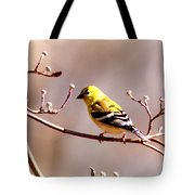 2164 - Goldfinch Tote Bag