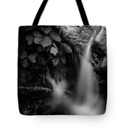 Broad River Flowing Through Wooded Forest Tote Bag