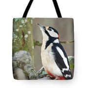 Great Spotted Woodpecker Tote Bag