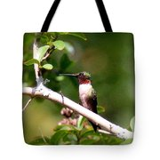 2274 - Hummingbird Tote Bag