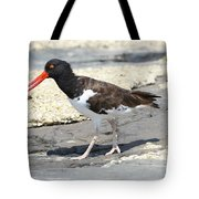 Oystercatcher Tote Bag