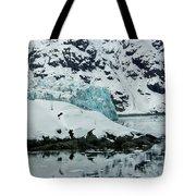 Alaska_00024 Tote Bag