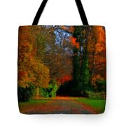 Landscape Hd Tote Bag