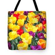 Amsterdam Tulips. Tote Bag