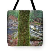 Great Smoky Mountains National Park Tote Bag