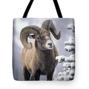25084, Bighorn Sheep, Winter, Jasper Tote Bag