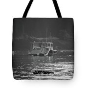 Down East Maine Tote Bag