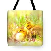 2736 - Canada Goose Tote Bag