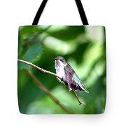 2757 -  Hummingbird Tote Bag