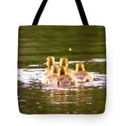 2767 - Canada Goose Tote Bag