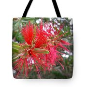Australia - Red Flower Of The Callistemon Tote Bag