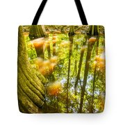cypress forest and swamp of Congaree National Park in South Caro Tote Bag