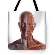 Facial Muscles Tote Bag