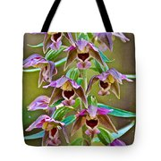 Helleborine On North Country Trail In Pictured Rocks National Lakeshore-michigan  Tote Bag