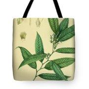 Vintage Botanical Illustration Tote Bag