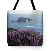 2a6101 Arched Rock And Blue Pod Lupine Ca Tote Bag