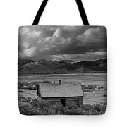 2d07515-bw Abandoned Cabin Tote Bag