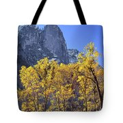 2m6705 Sentinel Rock In Autumn Tote Bag by Ed Cooper Photography